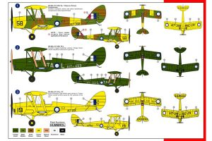 DH-82A Tiger Moth RAAF