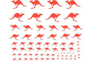 Red Roo Red Kangaroos - All Scales