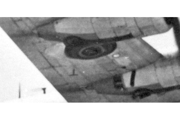 Red Roo Radio Altimeter Antennas 1/48